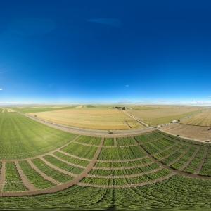 Simpozionul National Ziua Verde a Cartofului - editia XLII - S.C.D.C. Târgu Secuiesc